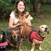 Produtos para Cachorro: 10 Itens para Alimentar, Brincar e Cuidar
