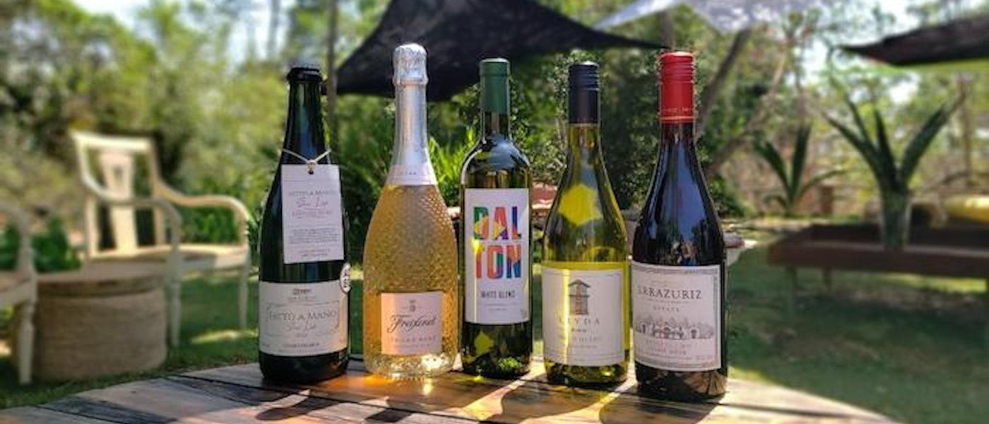 Veja 5 Vinhos para a Primavera: Espumante, Branco e Tinto