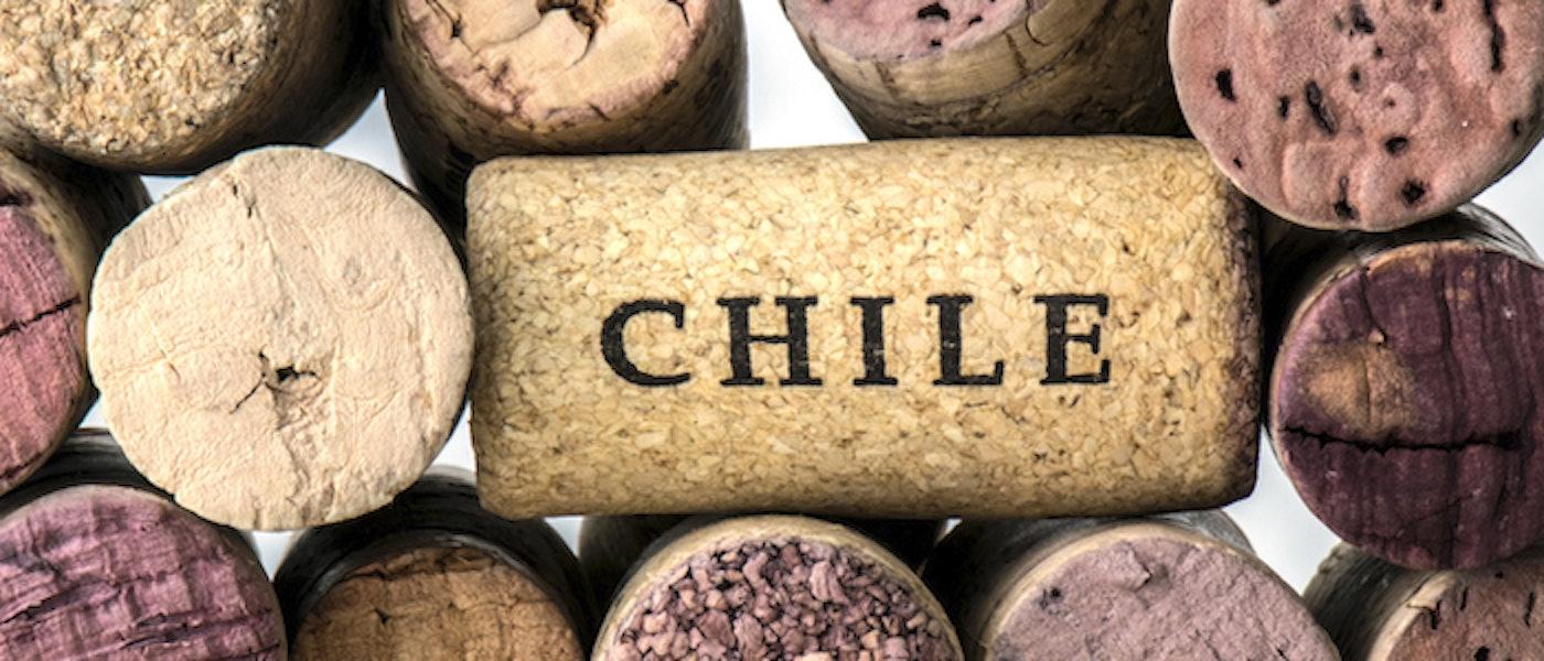 Vinho Chileno: 10 Rótulos Entre R$100 e R$200 que Merecem Atenção