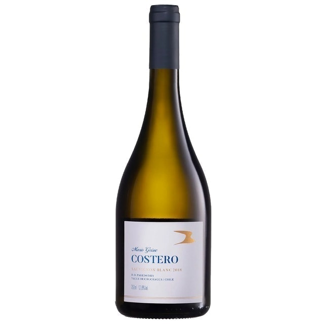 FAMÍLIA GEISSE Vinho Branco Costero Sauvignon Blanc 1