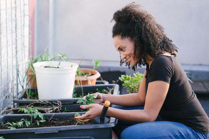 Para Escolher o Formato, Analise Quais Plantas Serão Colocadas no Vaso Autoirrigável
