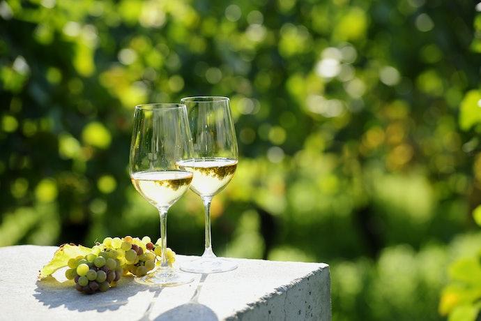 Taças para Vinho Branco: Menores e com Bojo mais Estreito para Manter a Temperatura