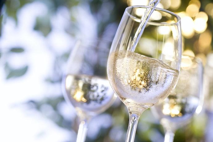 Não Deixe de Checar a Temperatura de Consumo do Vinho
