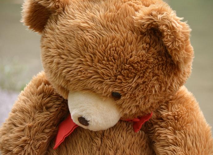 Para Evitar Acúmulo de Sujeira, Opte por Ursos Fabricados com Pelúcia de Pelos Curtos