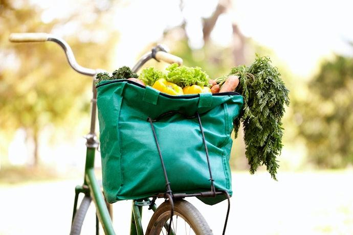 Ecobags de Lona e Nylon São Resistentes e Estruturadas, Perfeitas para Feiras e Mercados