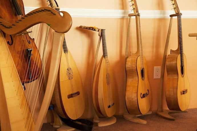 Verifique se o Suporte para Violão é Compatível com Outros Instrumentos