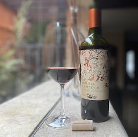 Vinhos Chilenos: Veja 10 Rótulos Indicados por Sommeliers e Enófilos (Brancos e Tintos) 1