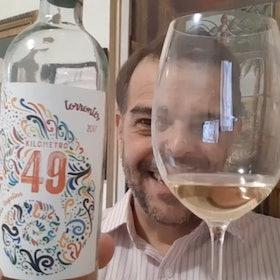 Vinho Bom e Barato: 6 Rótulos de até R$100 Indicados por Sommeliers e Enófilos 3