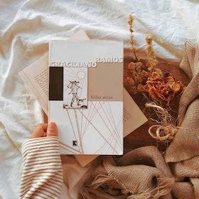 Clássicos da Literatura Brasileira: Veja 15 Obras Recomendadas 4