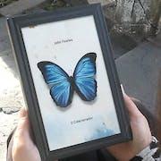 Best-Sellers: Veja 11 Livros de Ficção que Você Precisa Conhecer
