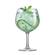 Top 10 Melhores Taças de Gin em 2021 (Vidro, Cristal e mais)